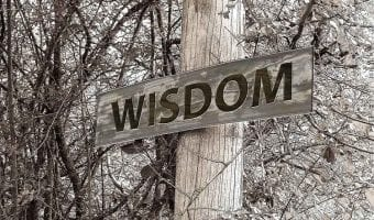 12 Ways to become Wiser