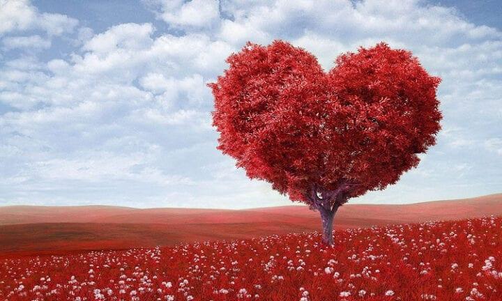Love heart infatuation