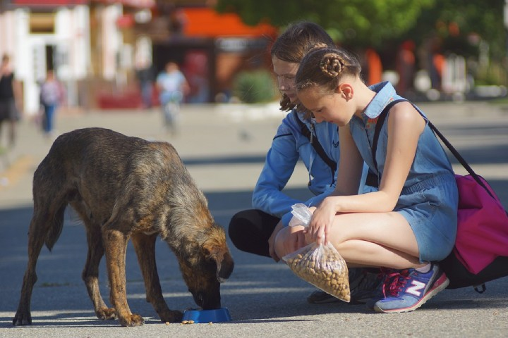 Ways to Show Compassion to Others